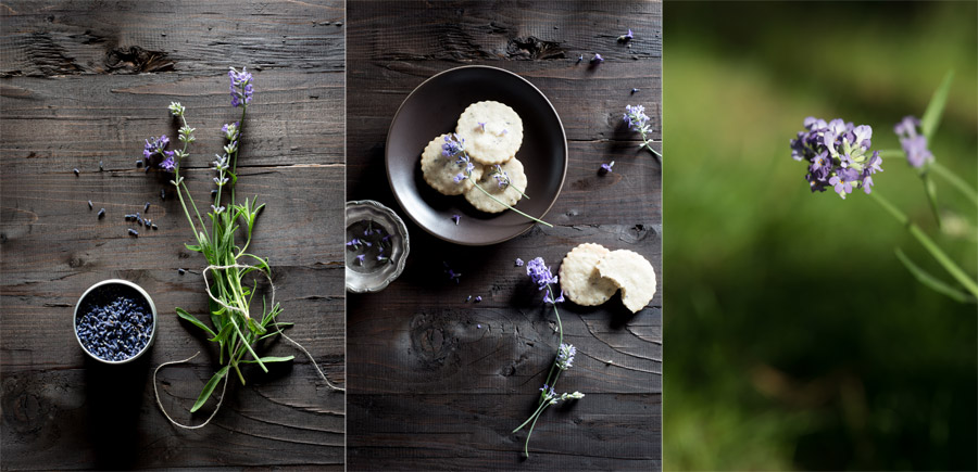 Lavender Cookies Stock Food Photos