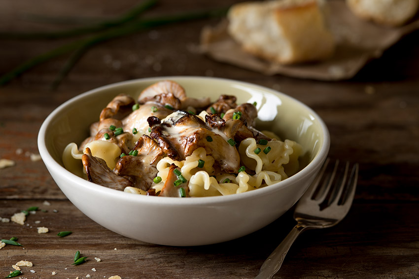Pasta with Chanterelles and Chive Cream Sauce Stock Food Photo