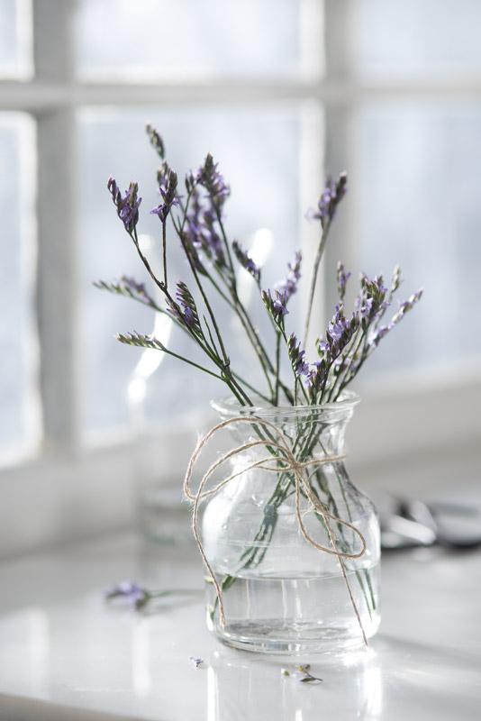 Purple Flowers on a Windowsill Stock Photo