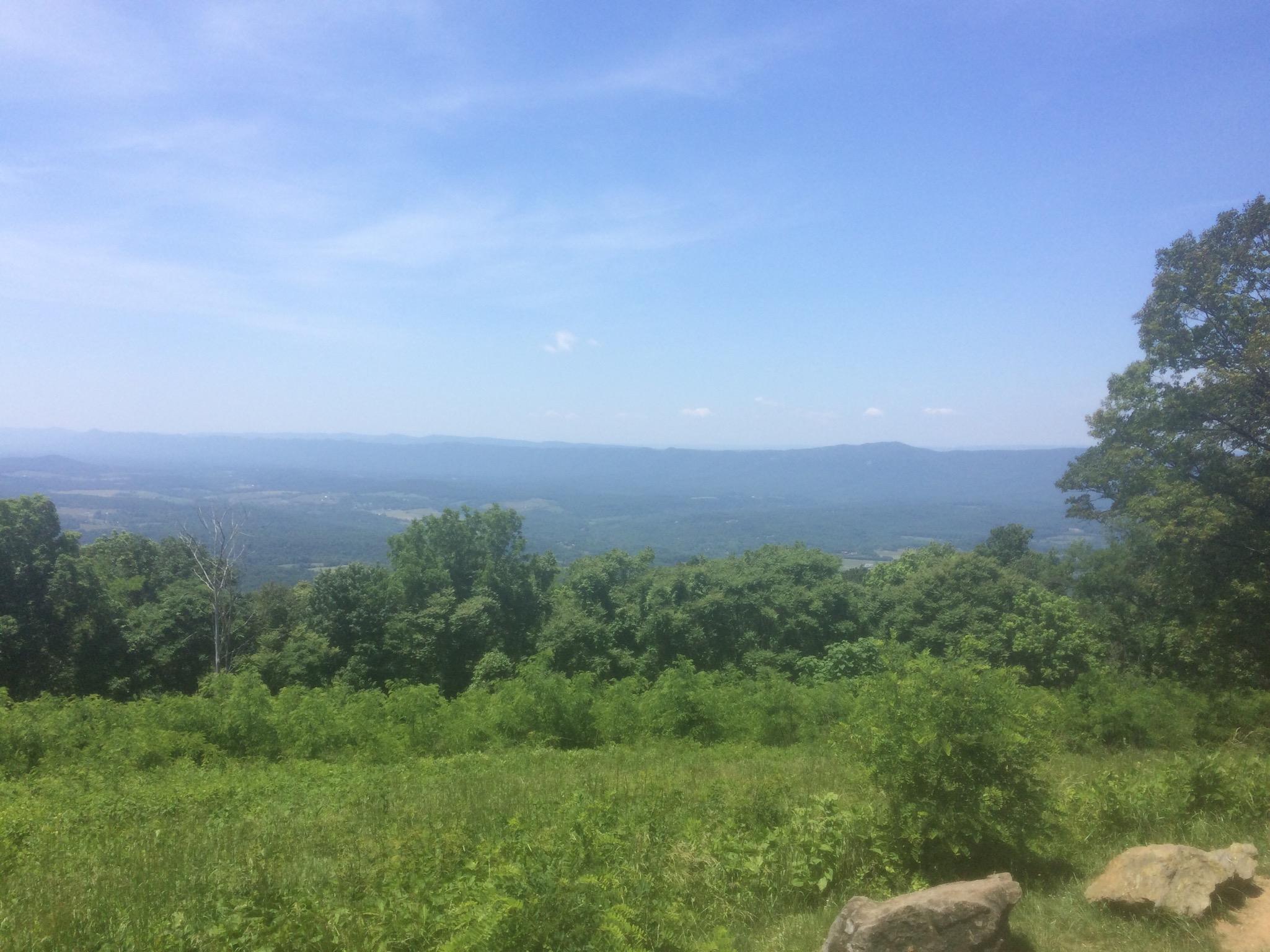 Skyline Drive  in Front Royal, Virginia near RC