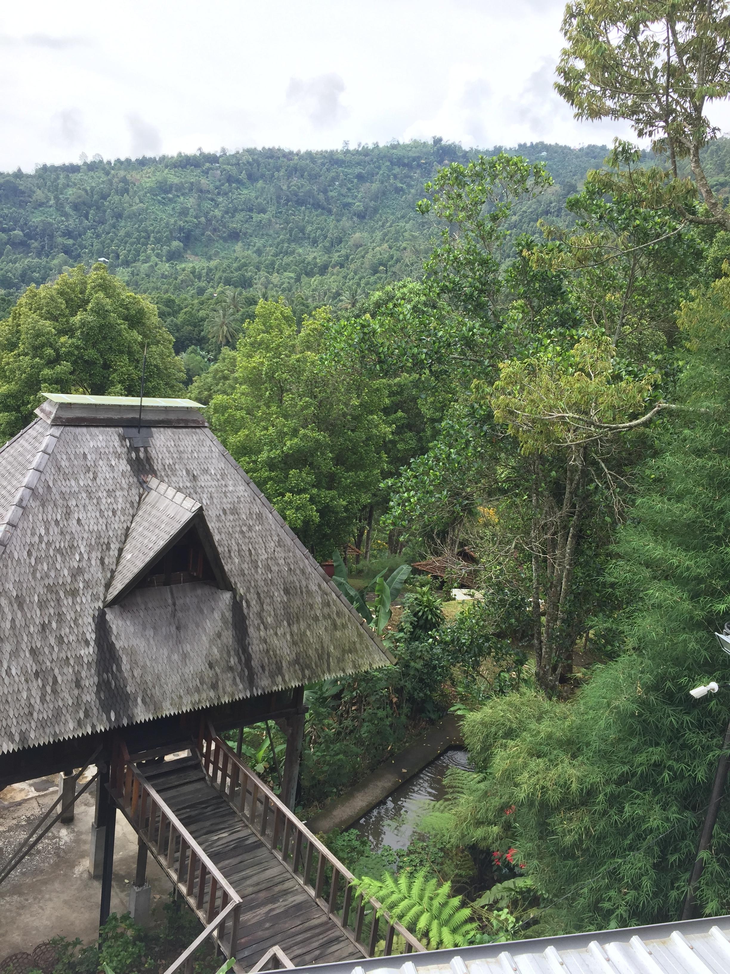 View from Adila