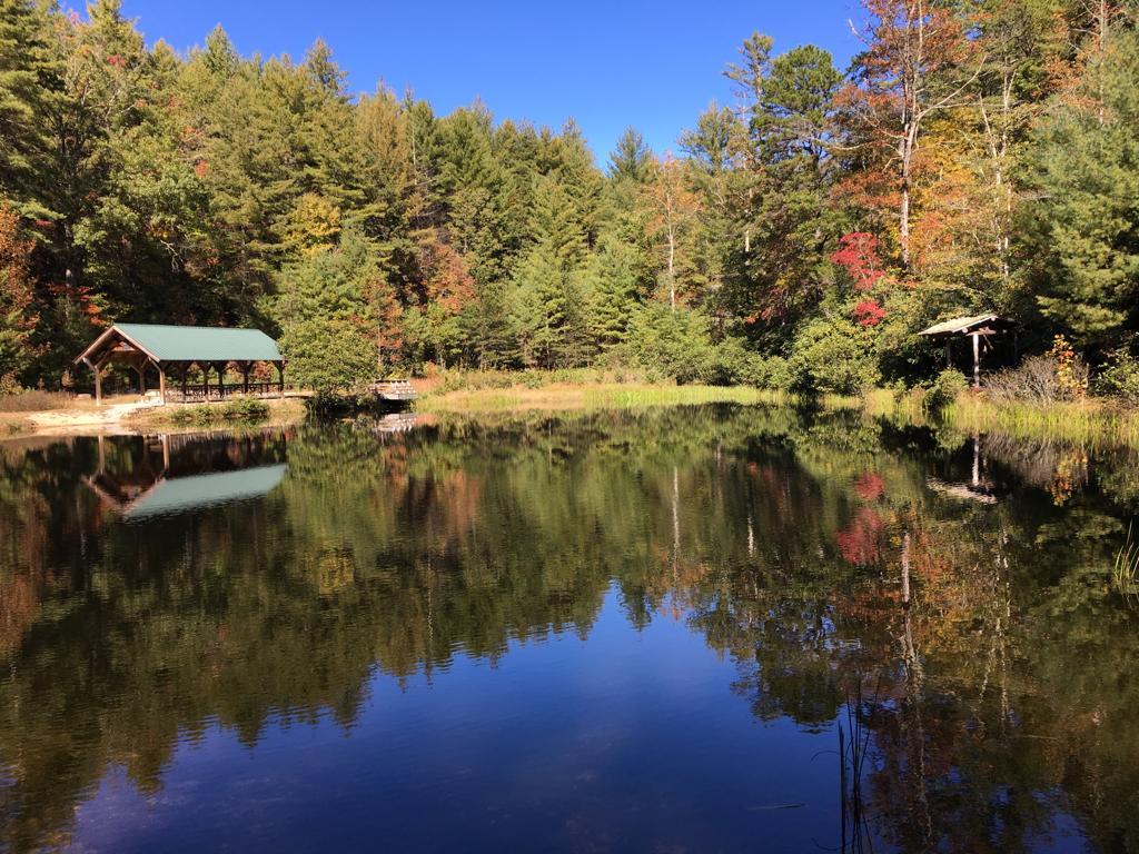 Dupont State Forest , Asheville, October 2016