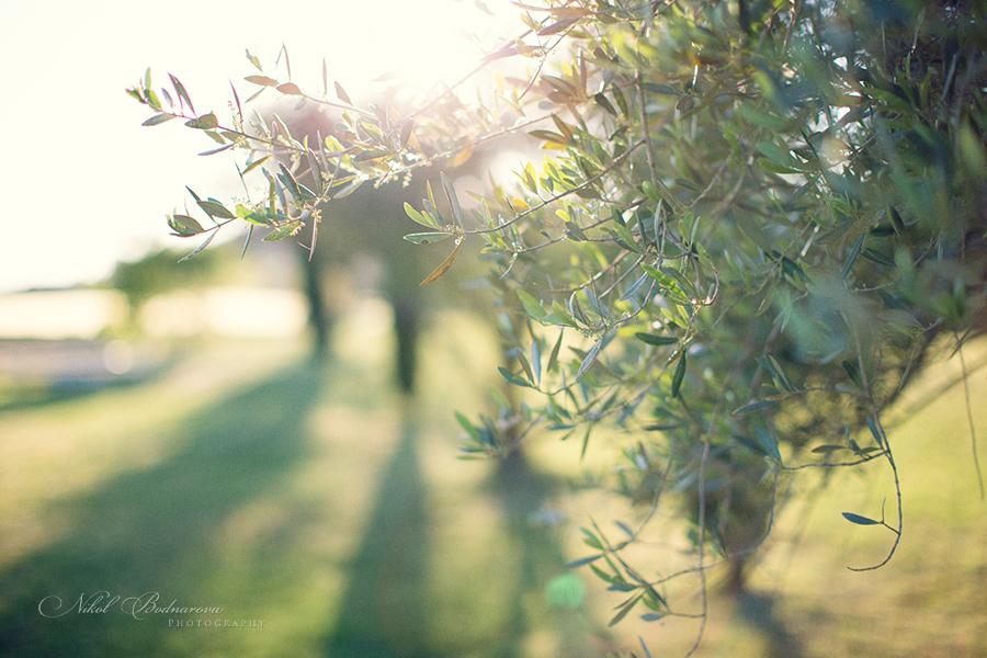 nikol_bodnarova_destination_wedding_photographer_1011.jpg