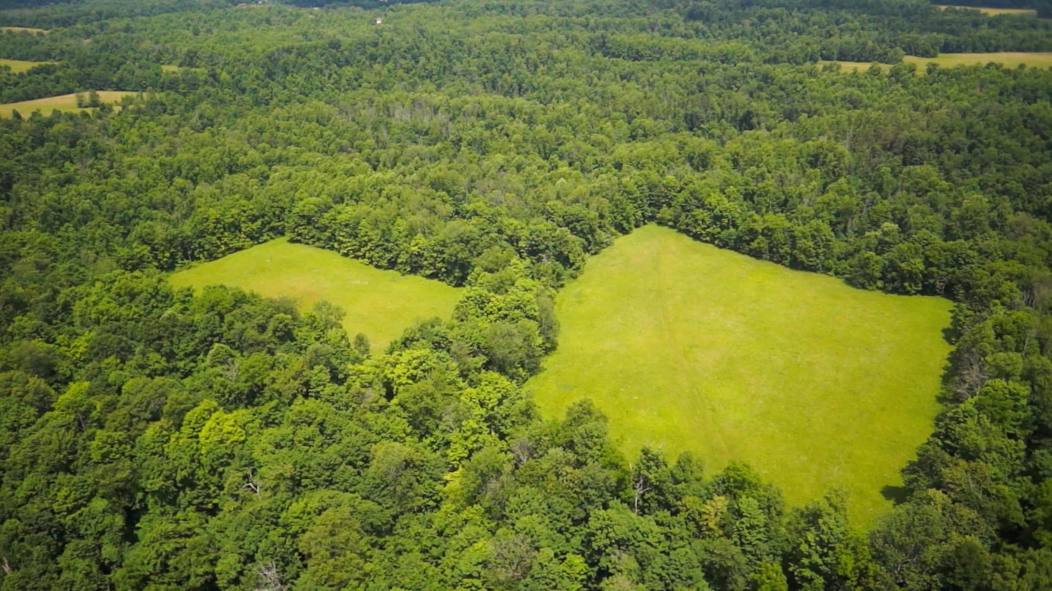 Knox County Land.jpg