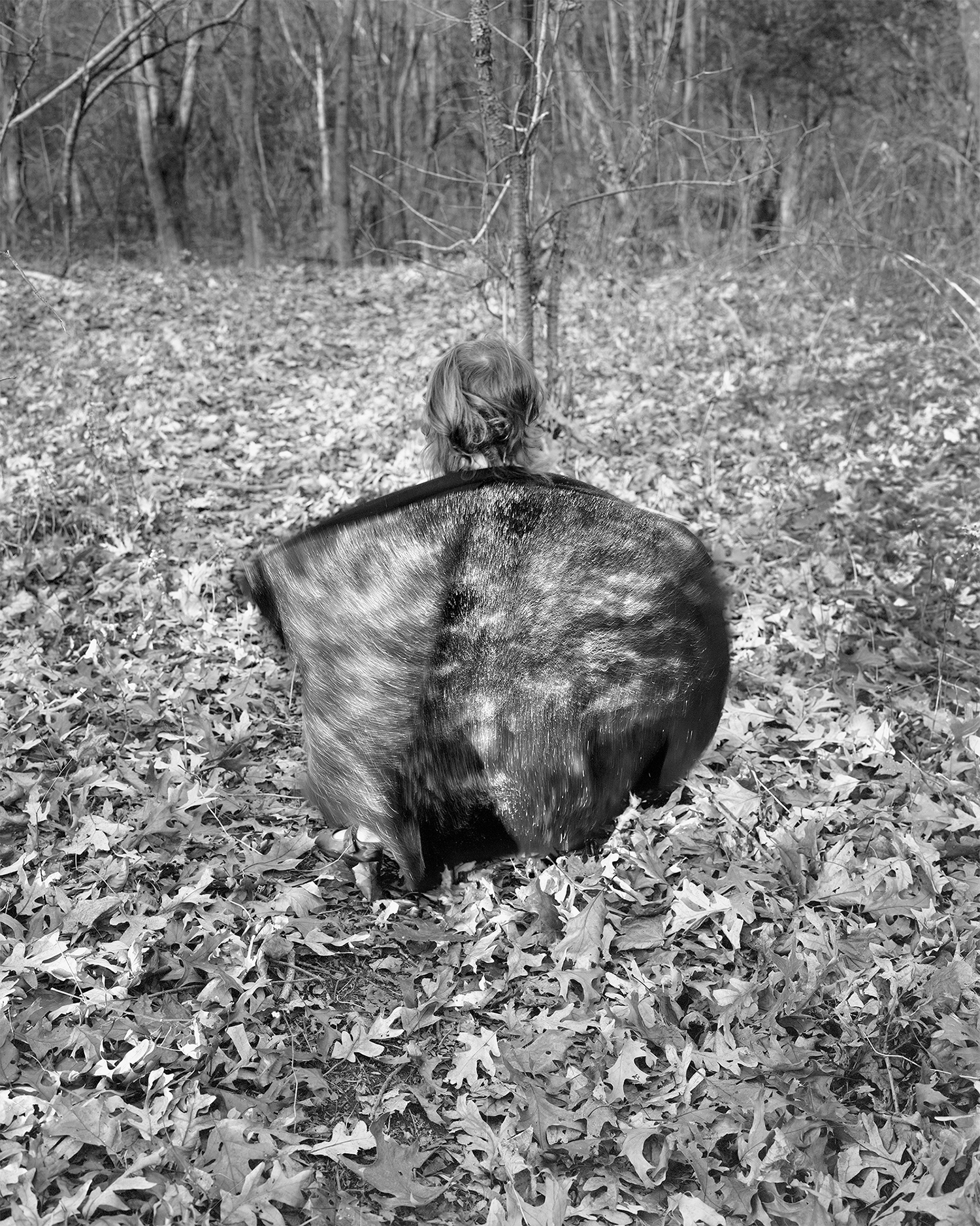Scott Alario,   Sparkle Fur, Autumn Spell,  2011, Archival pigment print mounted to rag board, 23 3/4 x 19 inches