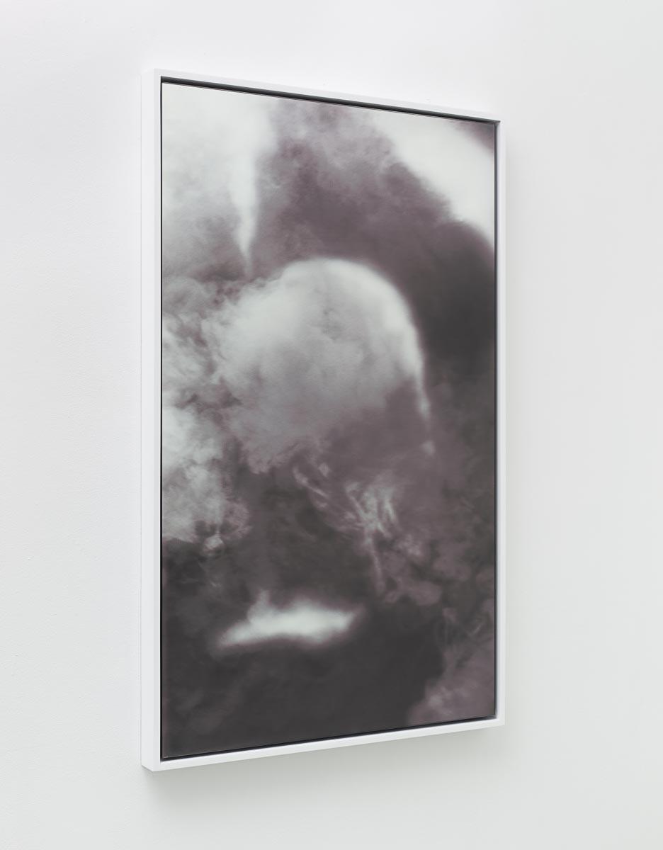 Goldschmied & Chiari, Untitled Portrait, 2015, Digital print on glass mirror, 45.3 x 27.6 in.