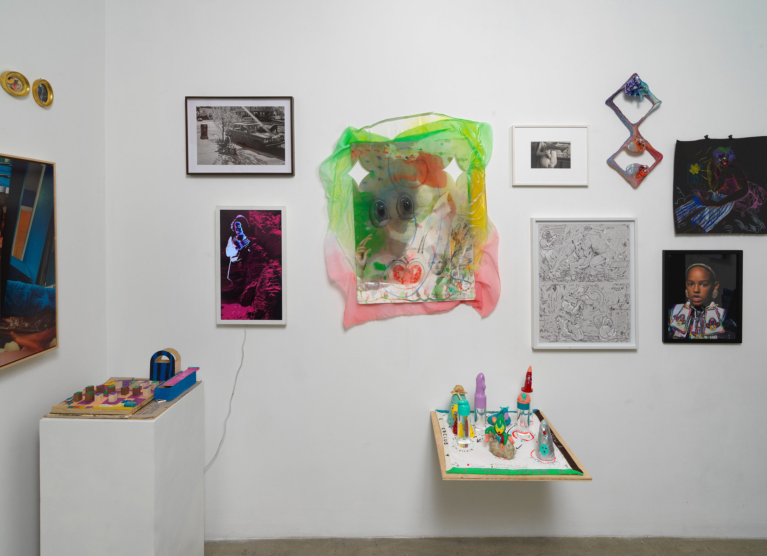 Installation view of 'Can You Dream It' featuring salon-style hanging of multimedia works by various artists, pedestal and shelf-based sculpture