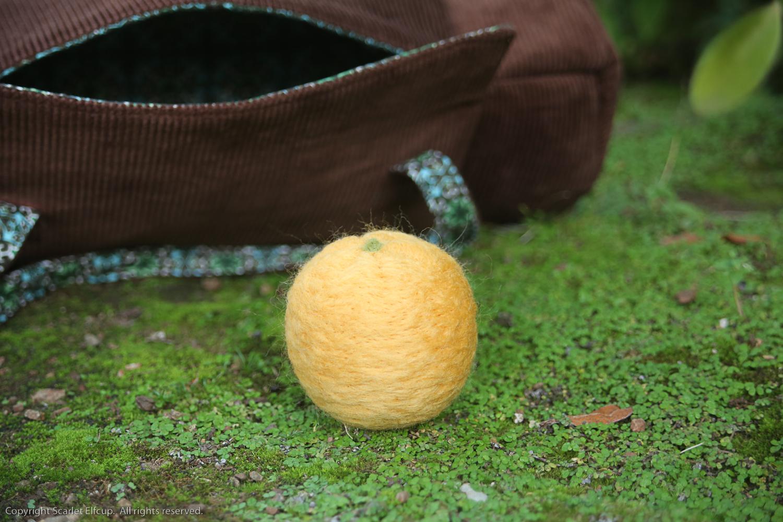 Clementine-2.jpg