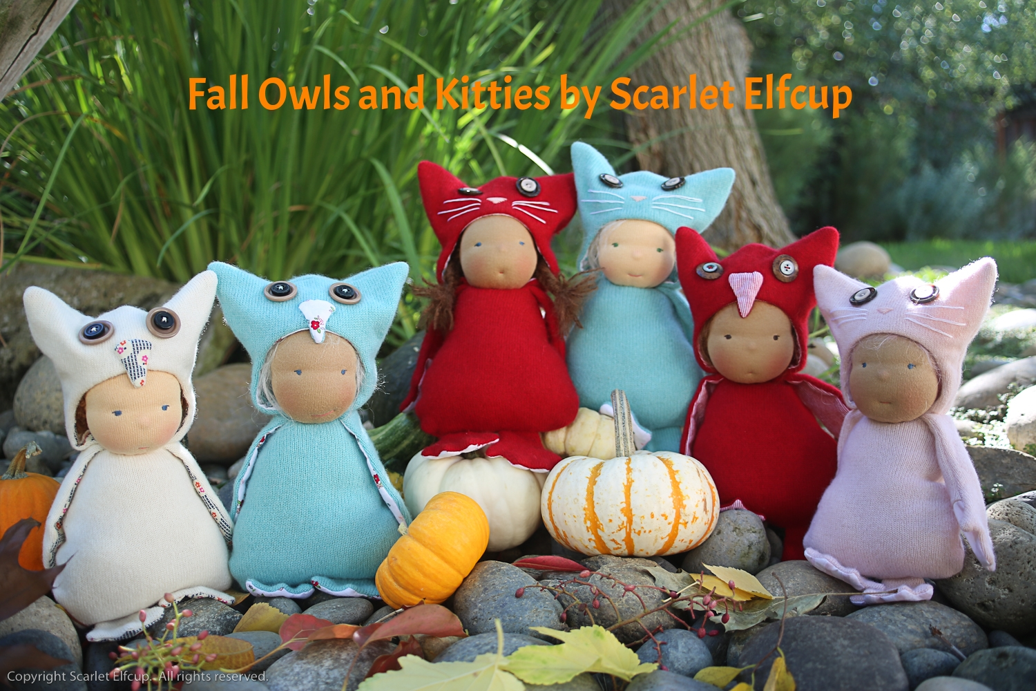 From left to right, meet Avery, Blue, Juliet, Jade, Boo and Rose. Read about each of these owls and kitties in the  blog .