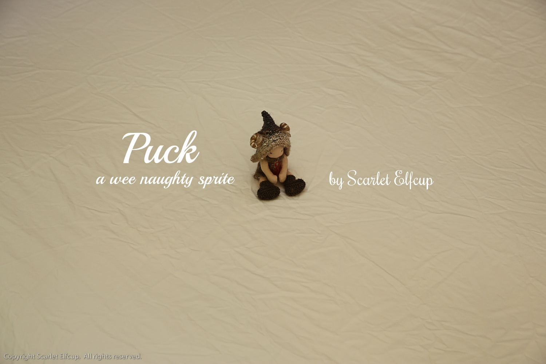 Puck-25.jpg