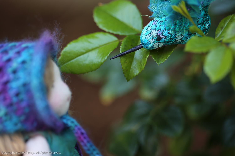 Hummingbird-63.jpg