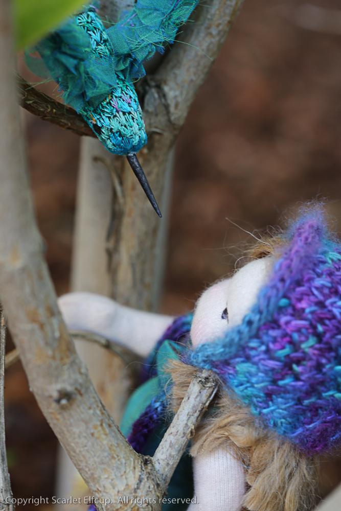 Hummingbird-64.jpg