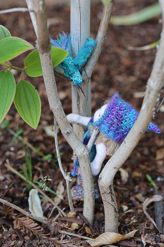 Hummingbird-65.jpg
