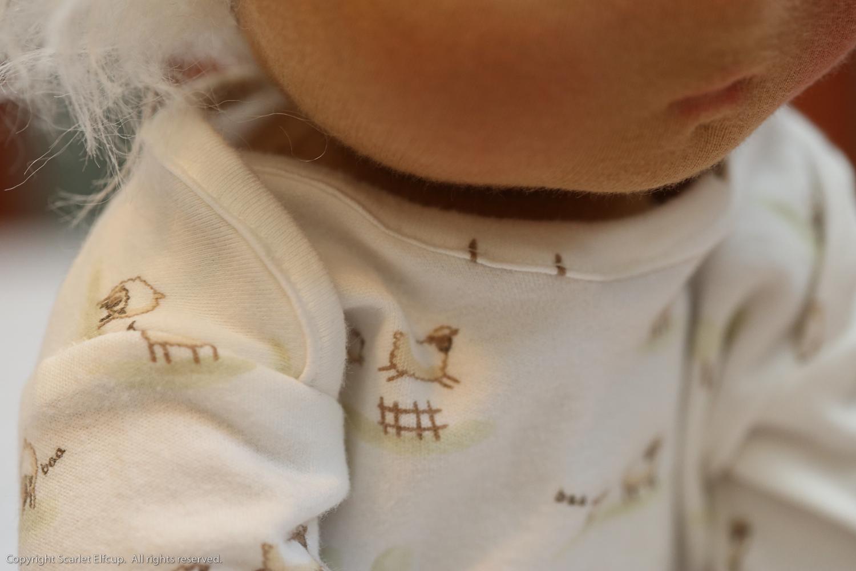 Baby Amandina-70.jpg