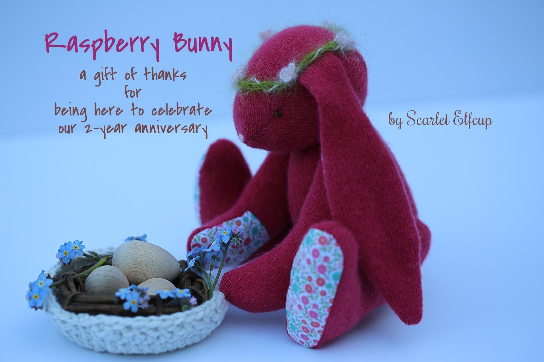 Raspberry Bunny Giveaway-5.jpg