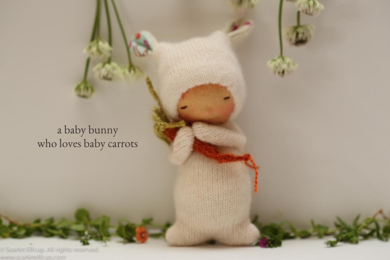 Yummy Tummy-25.jpg