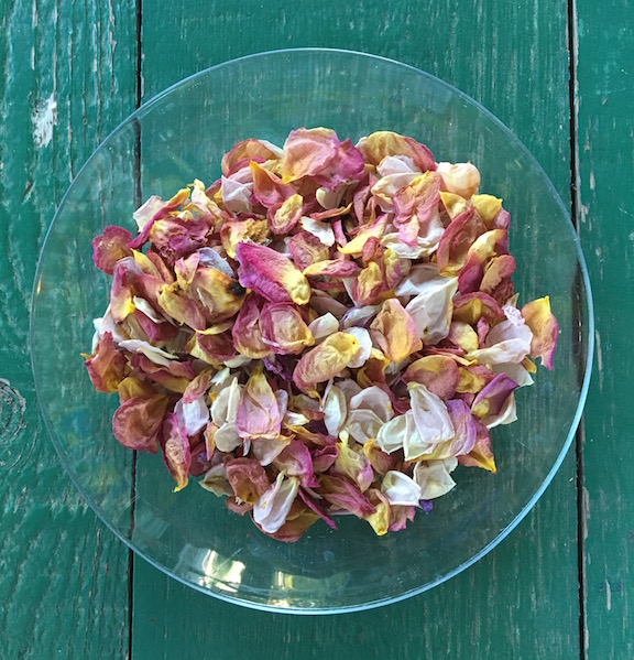 dried rose petals.jpg