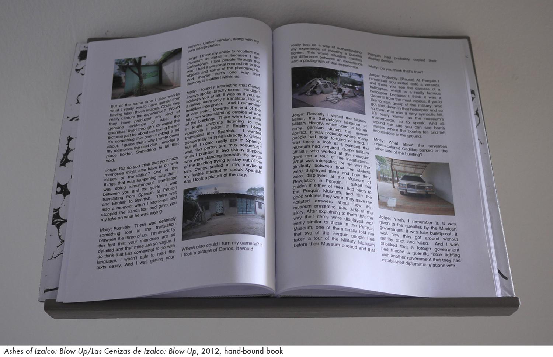 web ashes book 1.jpg
