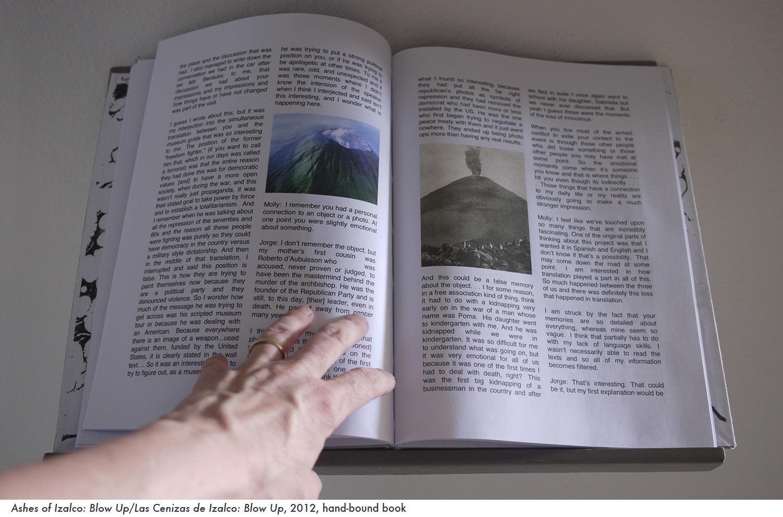 web ashes book 2.jpg