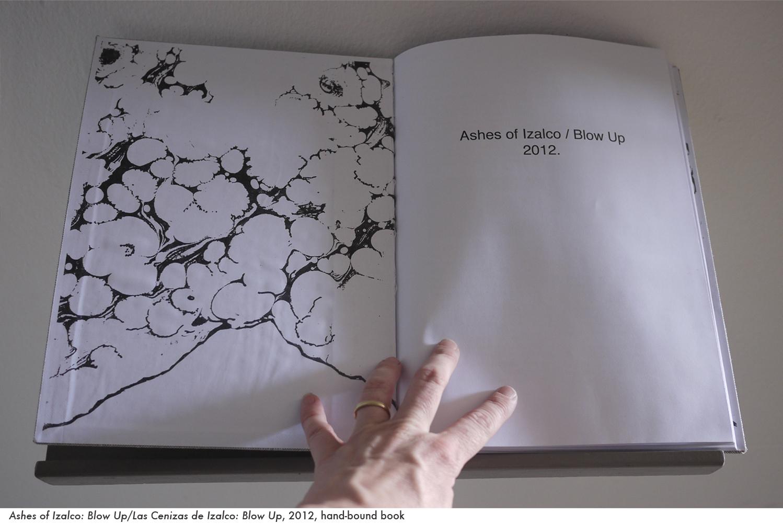 web ashes book 4.jpg