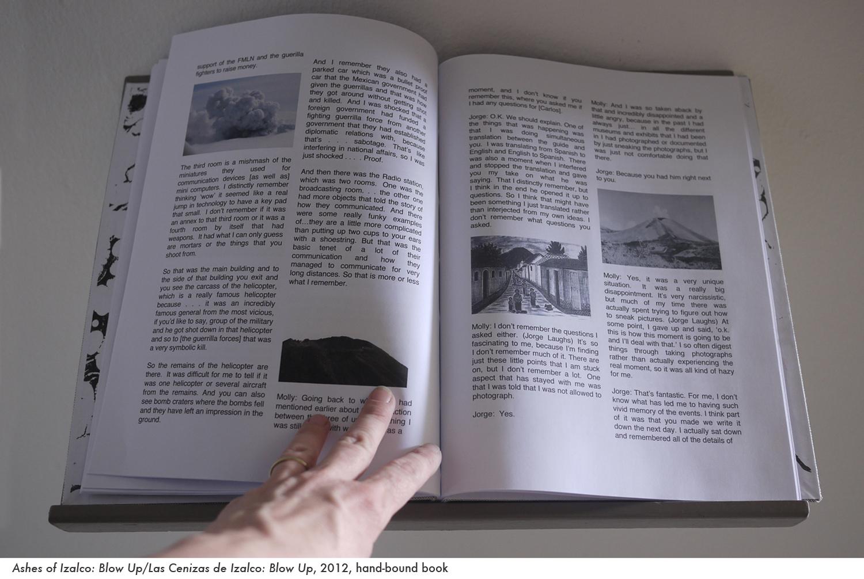 web ashes book 3.jpg