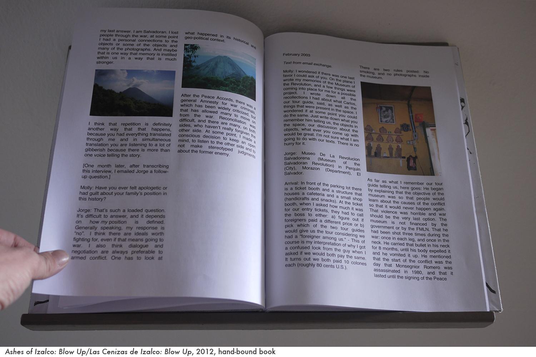 web ashes book 5.jpg