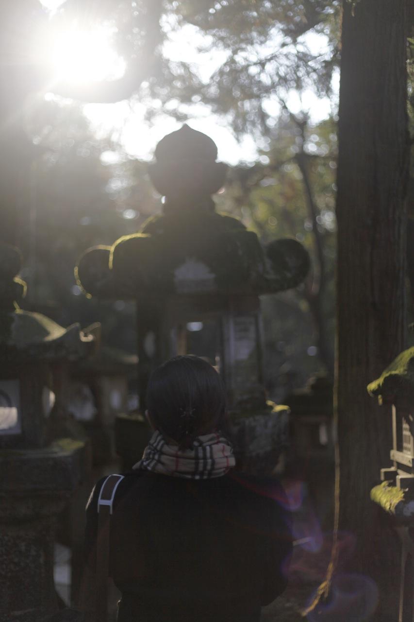 Light Beyond The Lantern (Nara)