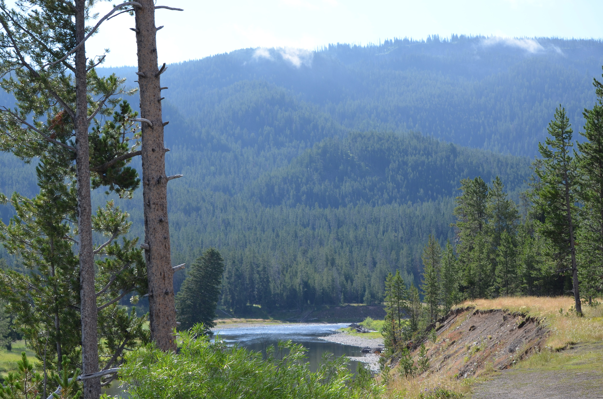 Yellowstone South Entrance / warporweft.com
