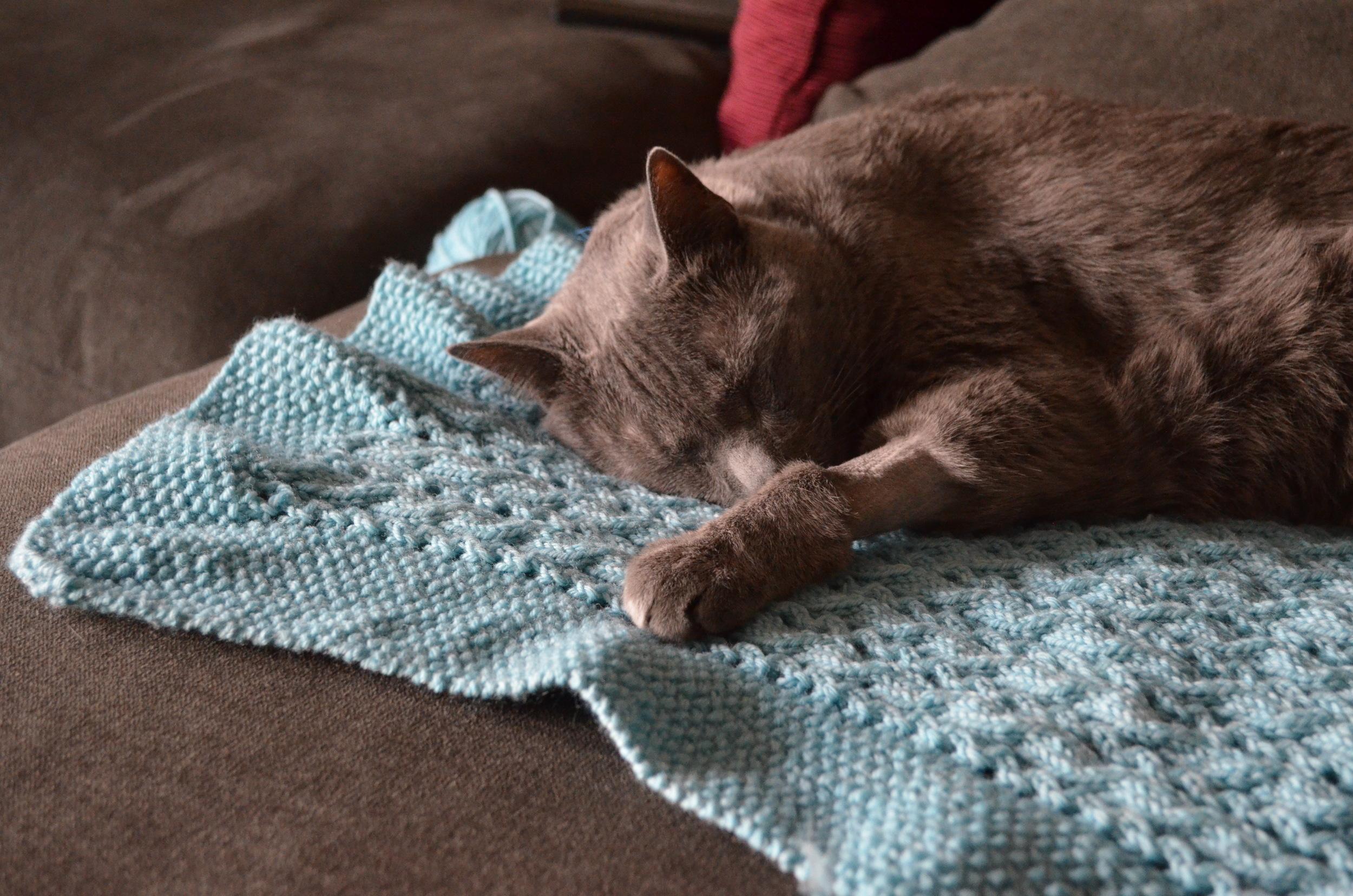 Cable Baby or Pet Blanket / warporweft.com