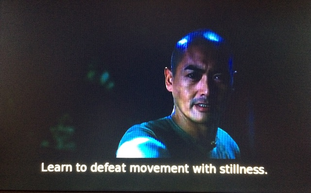 From  Crouching Tiger, Hidden Dragon