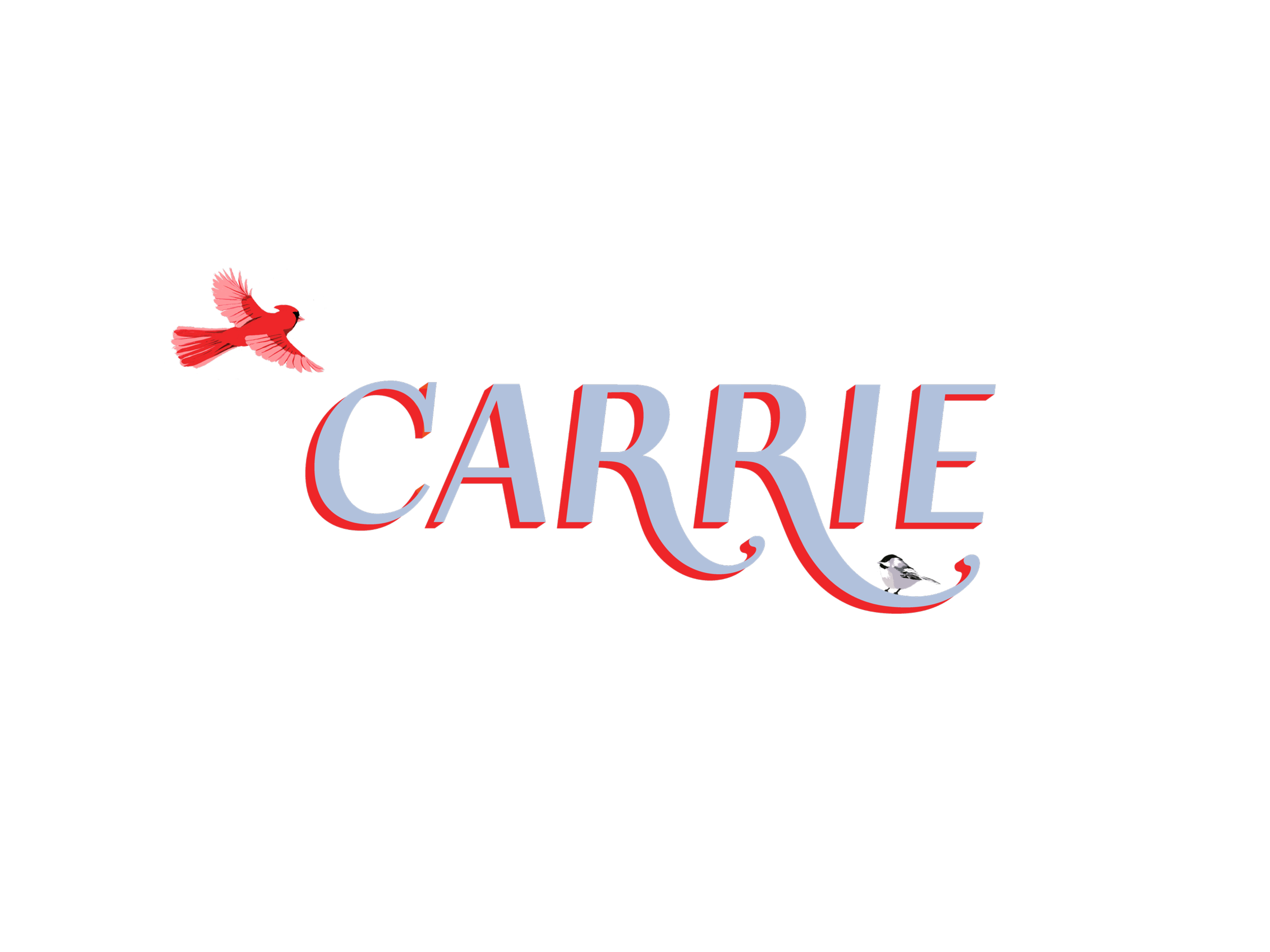 carrie_type_web_documentation.png