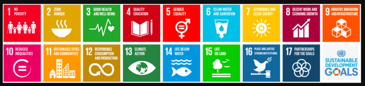 Why might the SDGs be a solid foundation for authentic action?