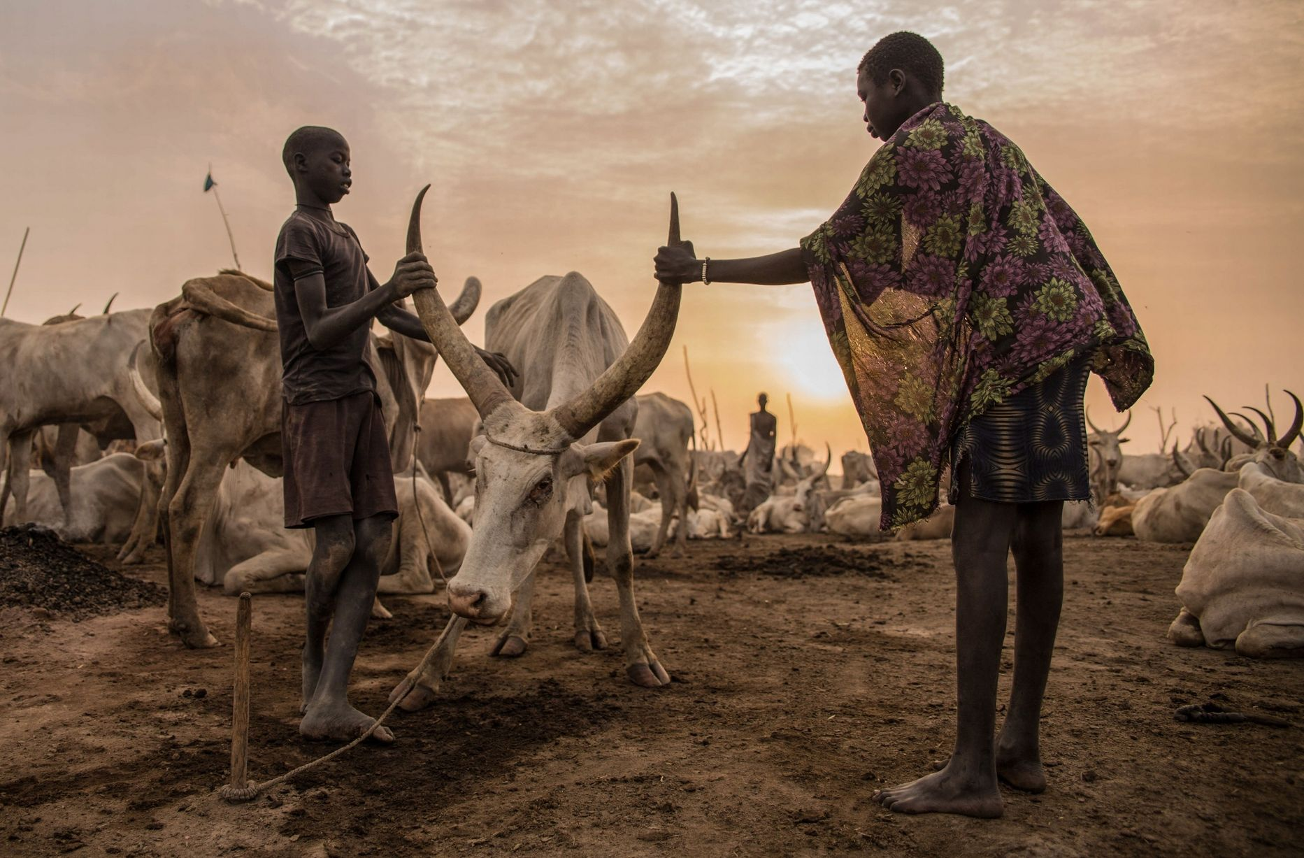 Sudanese-boys-from-Dinka-tribe-take-care.jpg