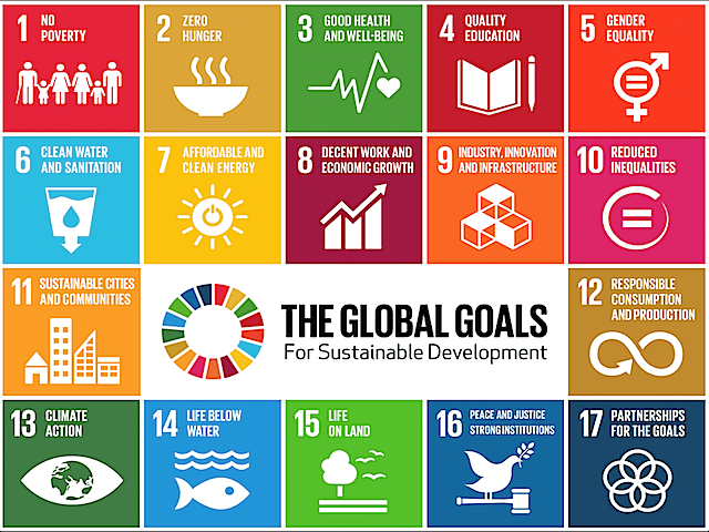 2-19SustainableDevGoals-1.png