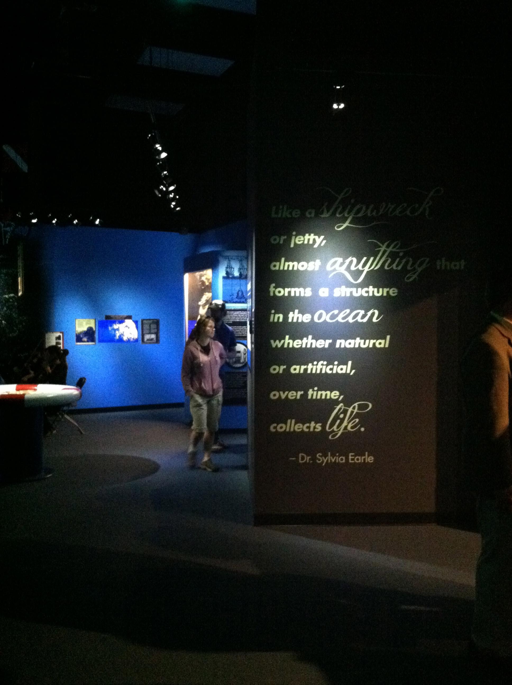 Exhibit Entrance Wall