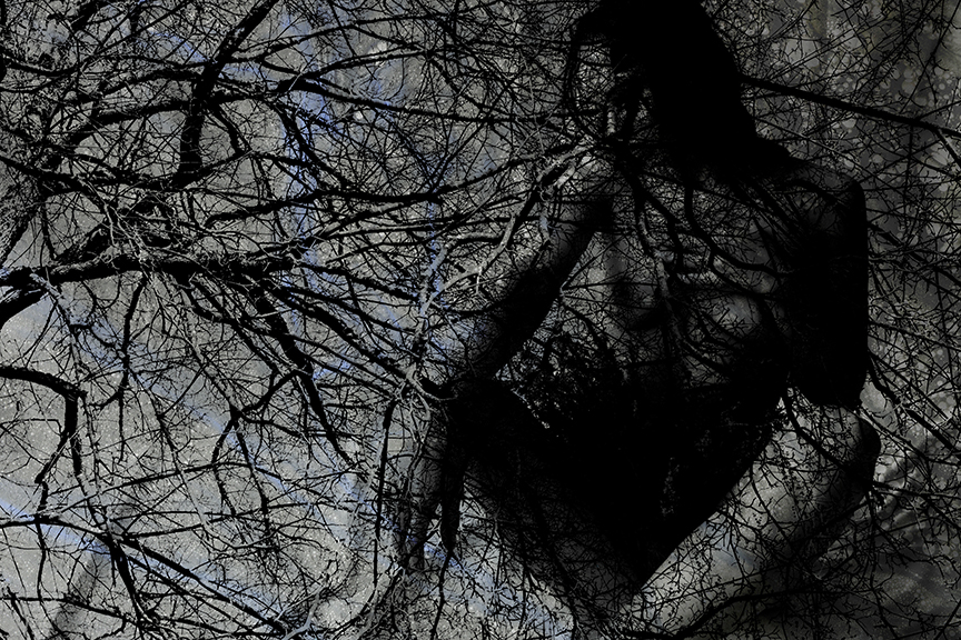 MarcelineTreeBubblesSm.jpg
