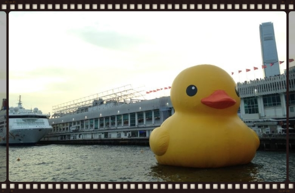 Goodbye Hong Kong. A shot of the famous traveling duck in the harbour. Quack quack.