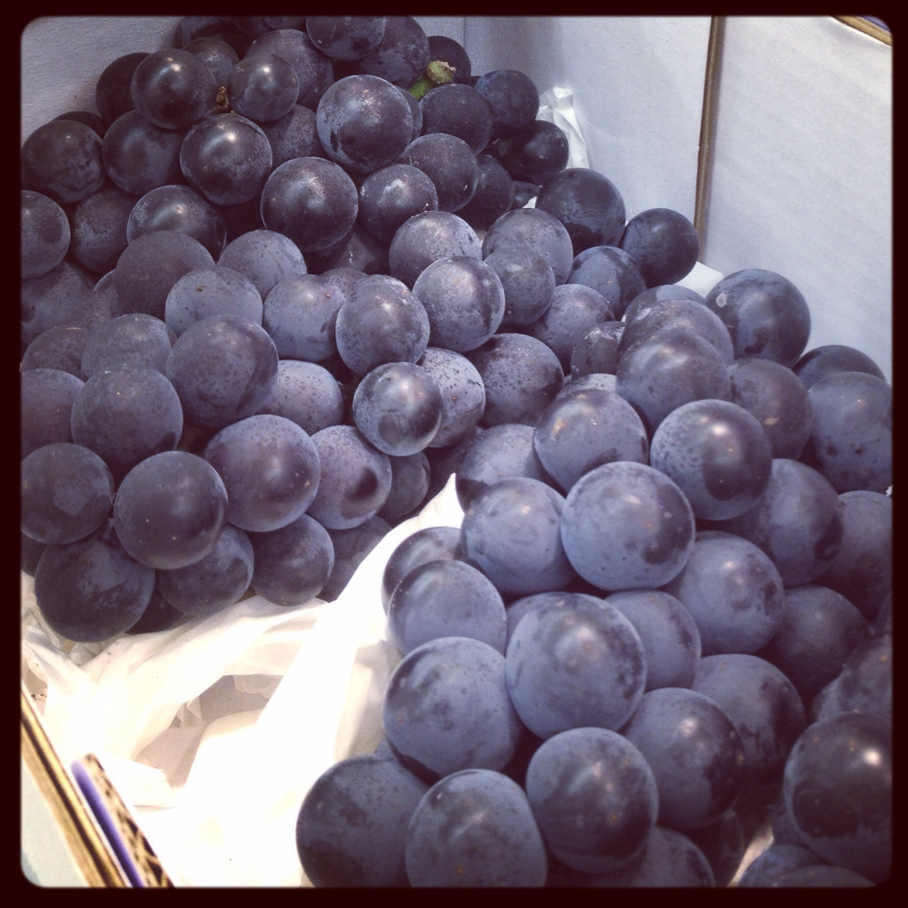 These are also one of my favourite Korean summertime fruits! They are different than regular grapes - I call them concord grapes because we used to eat those back home in Vancouver, but I'm not sure if 거봉포도 (GuhBong PohDoh) is exactly the same thing or just similar. When I start to see these grapes come back in the stores and street, it definitely means Korea summertime to me!