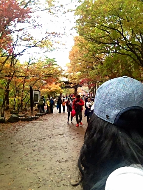 Me and my lulu's...staring at the crazy hiking gear that all the Koreans are decked out it. I think their outfits were just as colourful if not out-matched the foliage! LOL