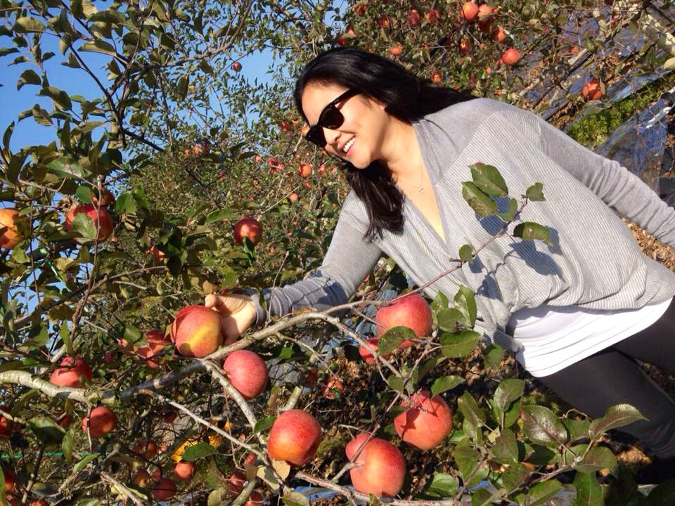 You can buy what you pick - and there were so many beautiful red apples easily available to pick off!