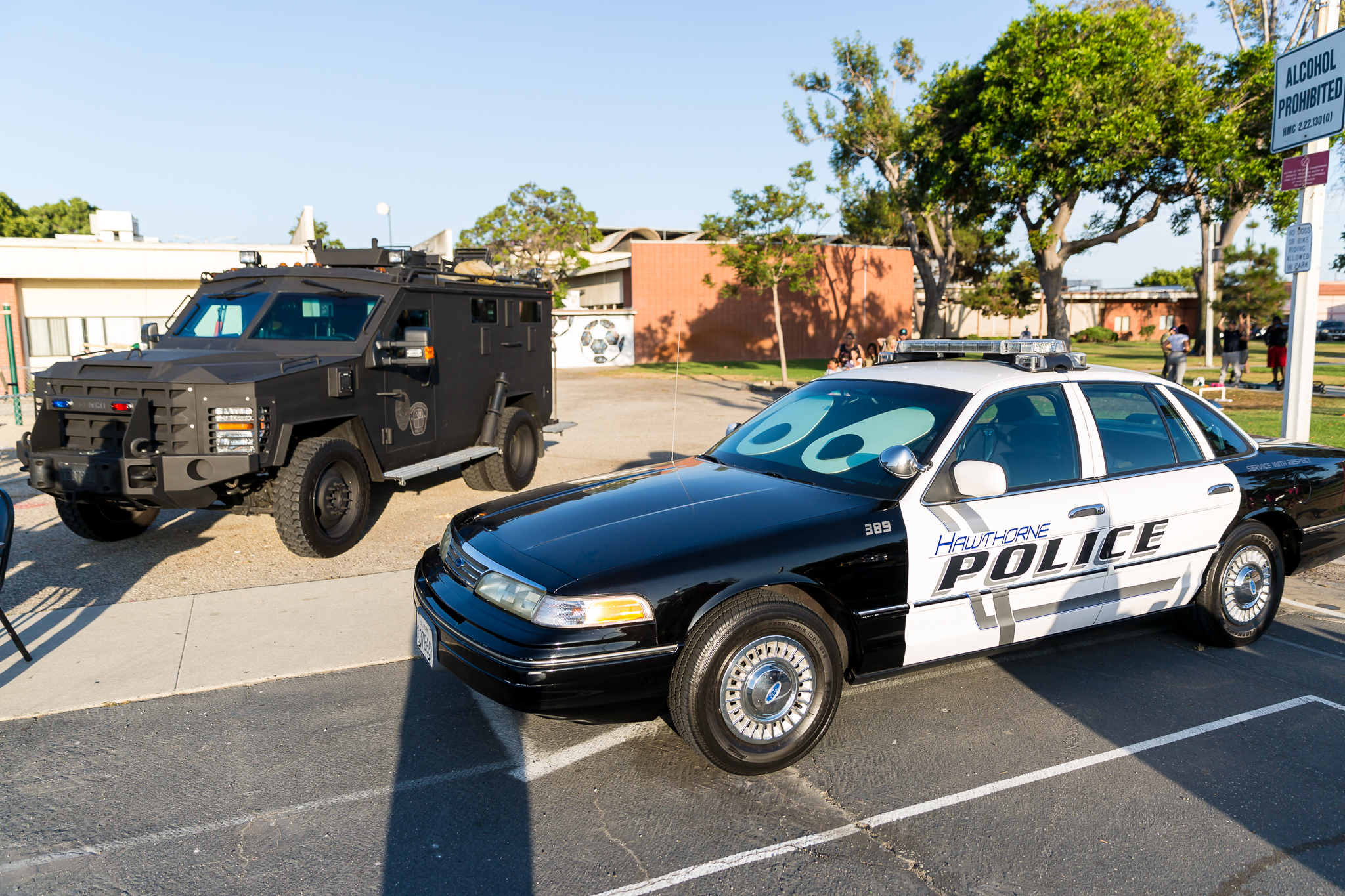 Police and Swat cars