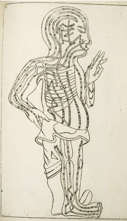 Drawing_of_the_human_body_showing_acupuncture_meridians..JPG