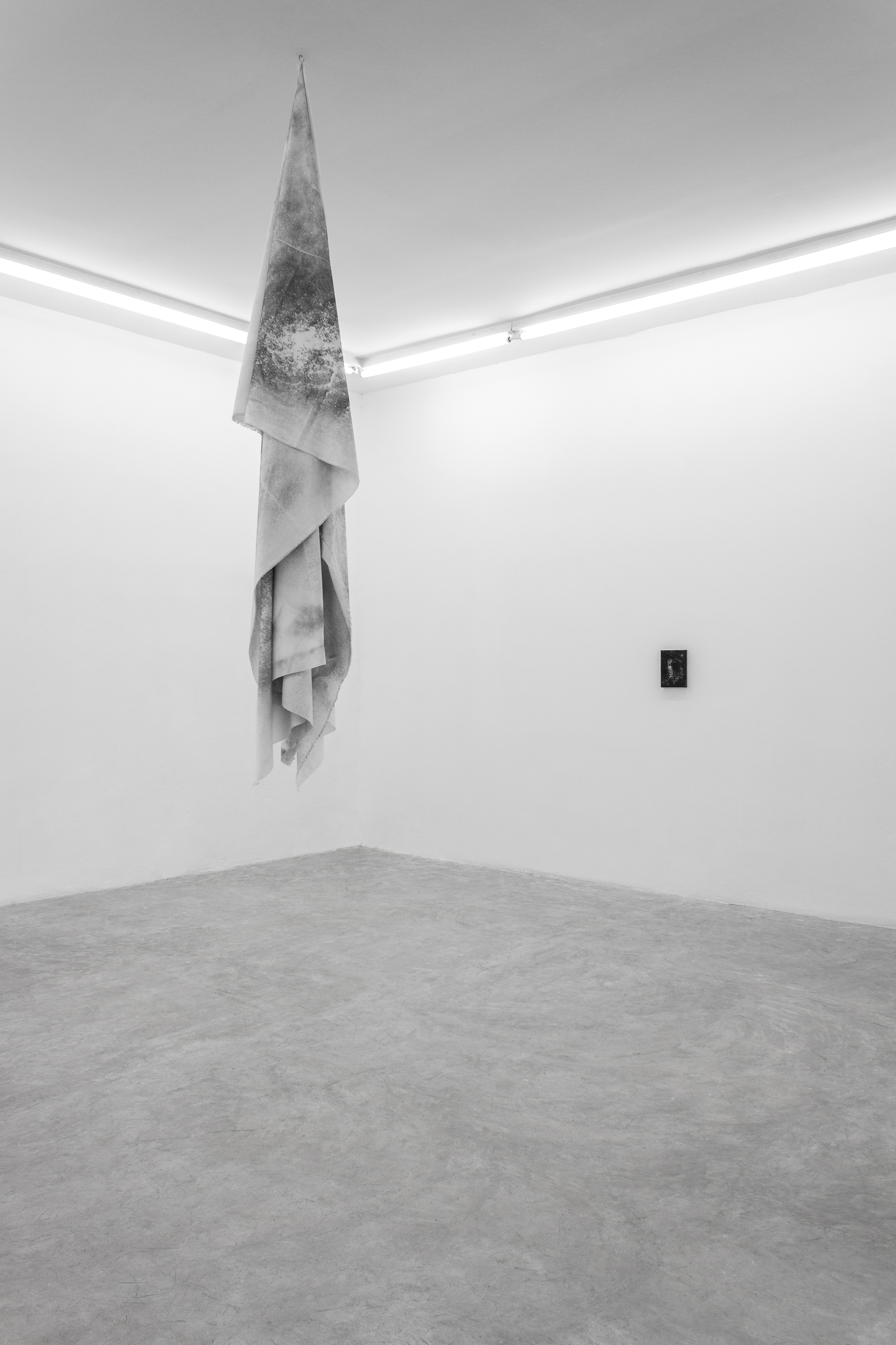 Installation shot for  Not For Nothing  at FIFI Projects. San Pedro, Mexico