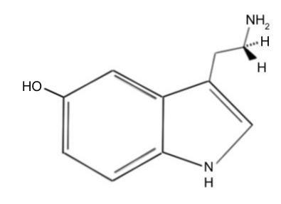 "2-Minute Neuroscience<a href=""/blog/2-minute-neuroscience-serotonin"">→</a><strong>Serotonin</strong>"