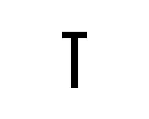 T.jpg