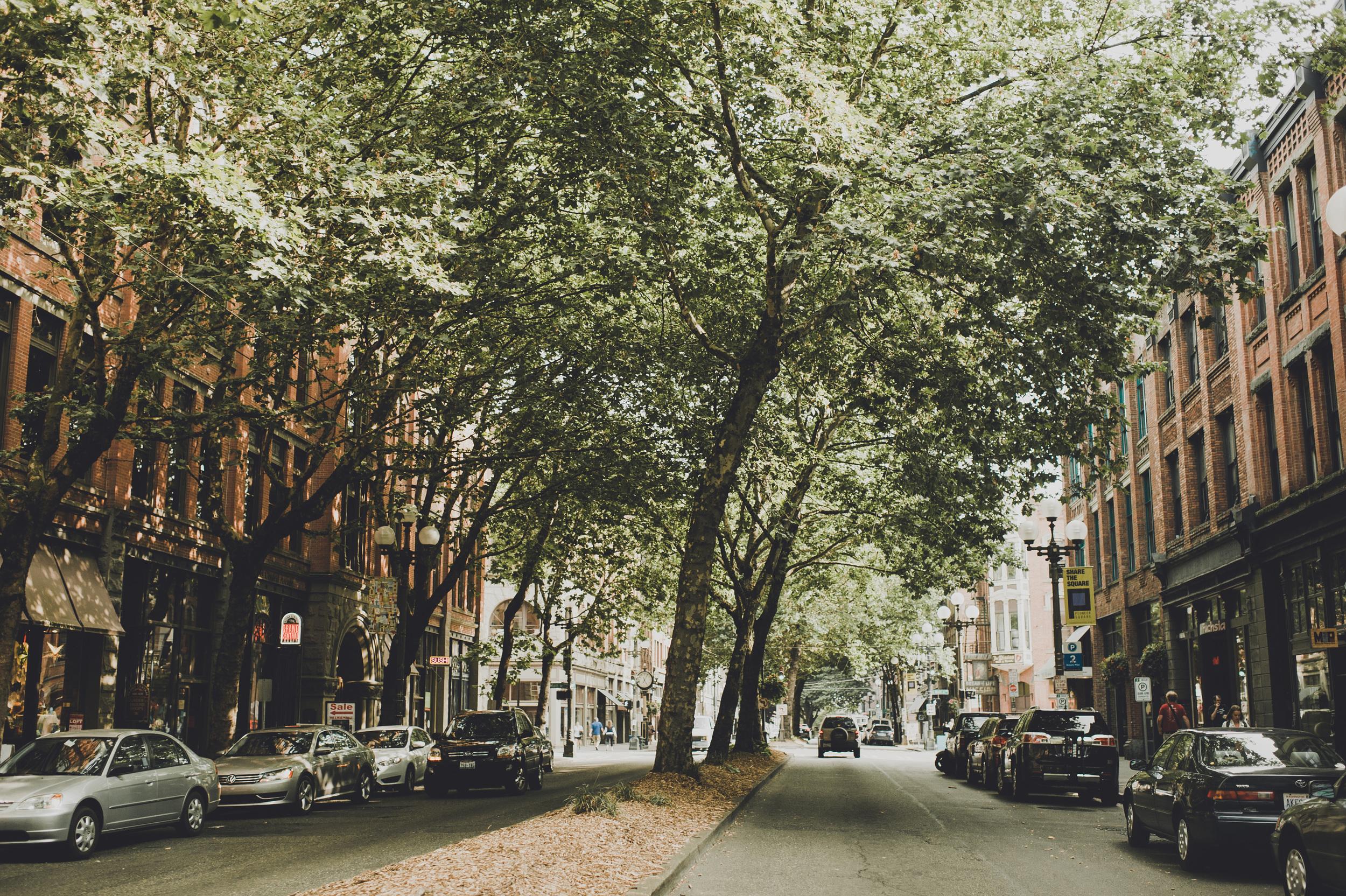 CASPhoto_ThePioneerCollective_Neighborhood-3.JPG