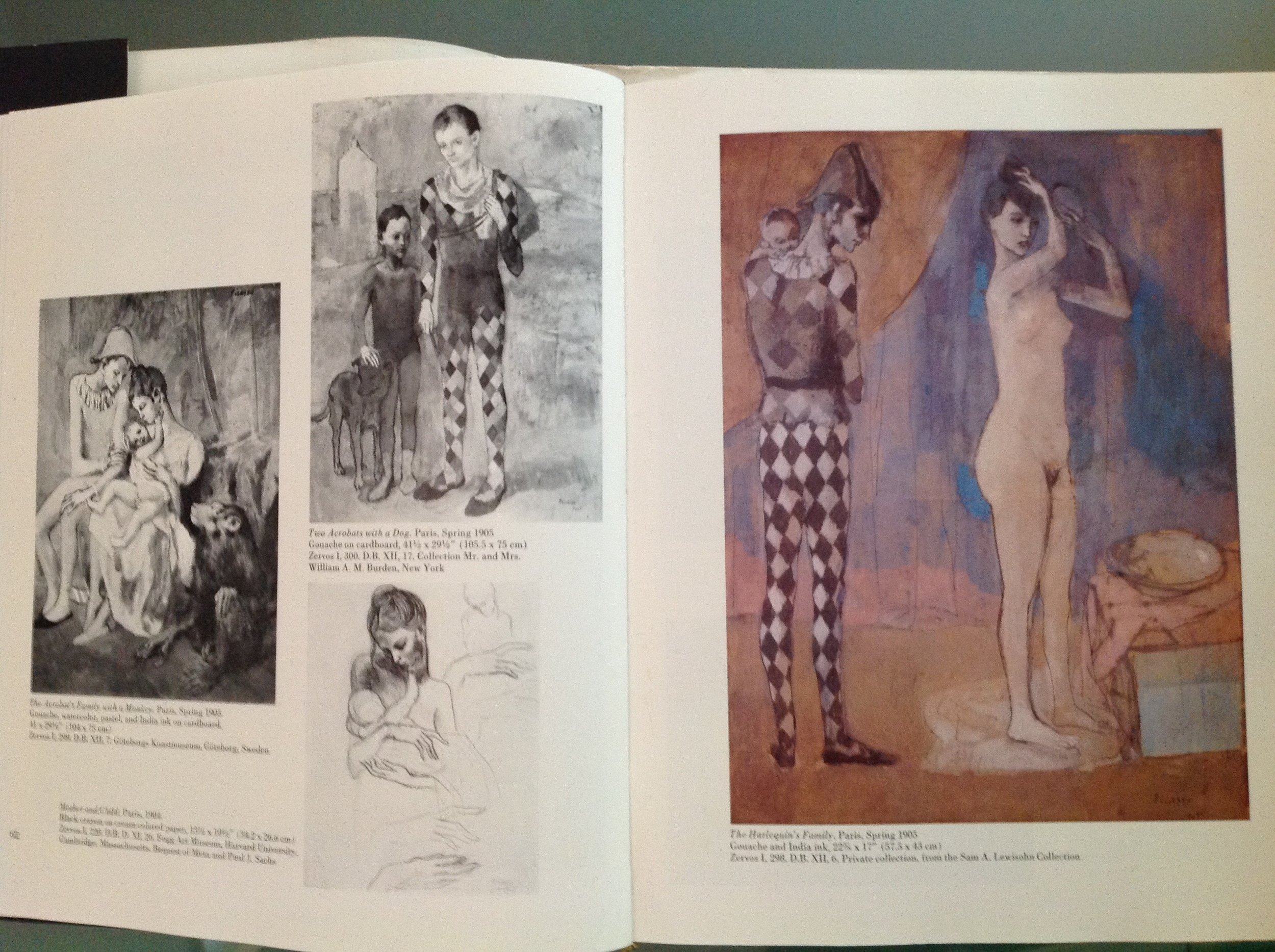 Picasso's Harlequin's Family