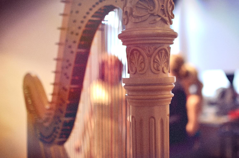 Photoshoot - Katie through harp.jpg