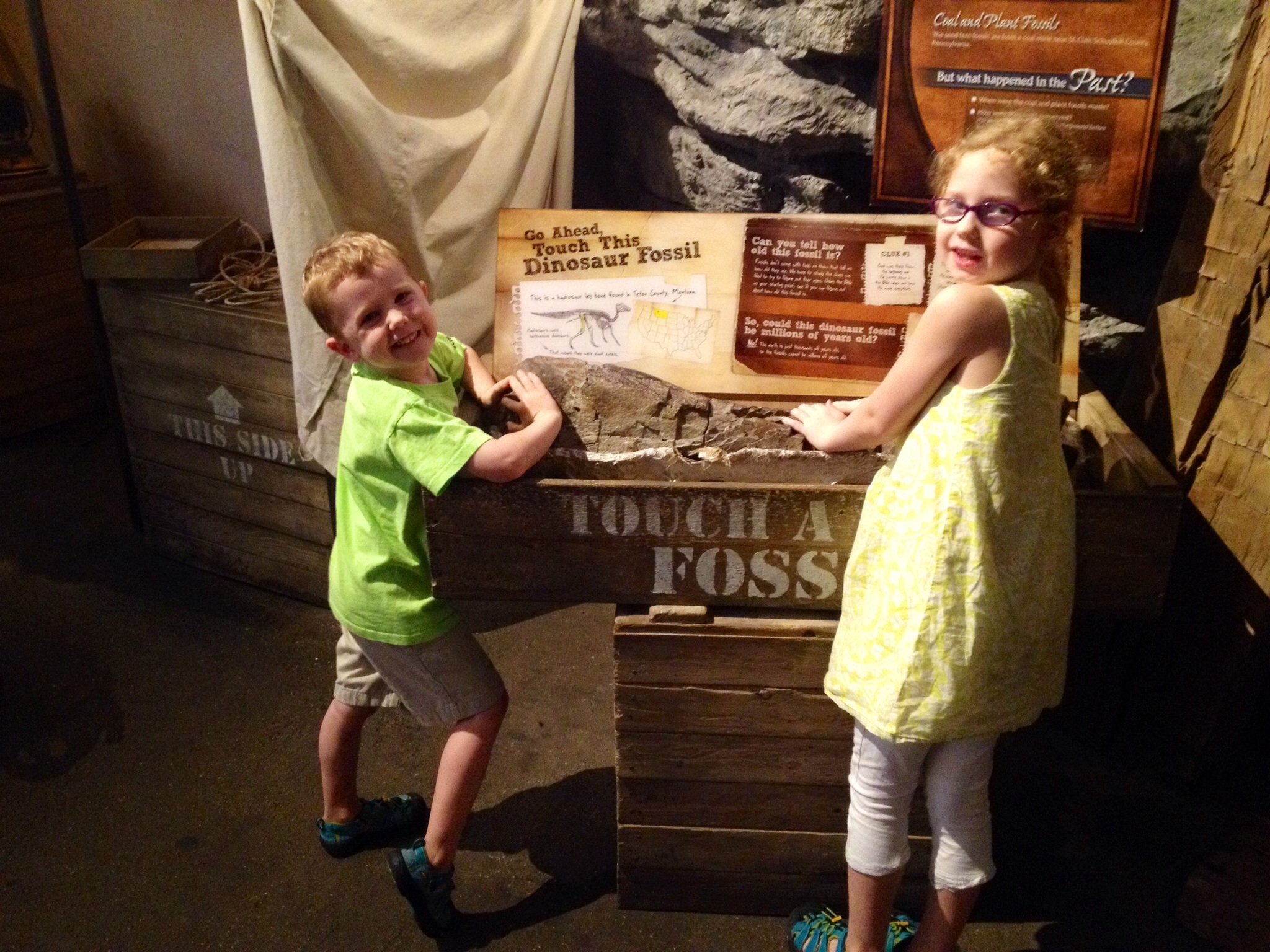 So how many of you can say that you've touched a dinosaur fossil without being kicked out of the museum?