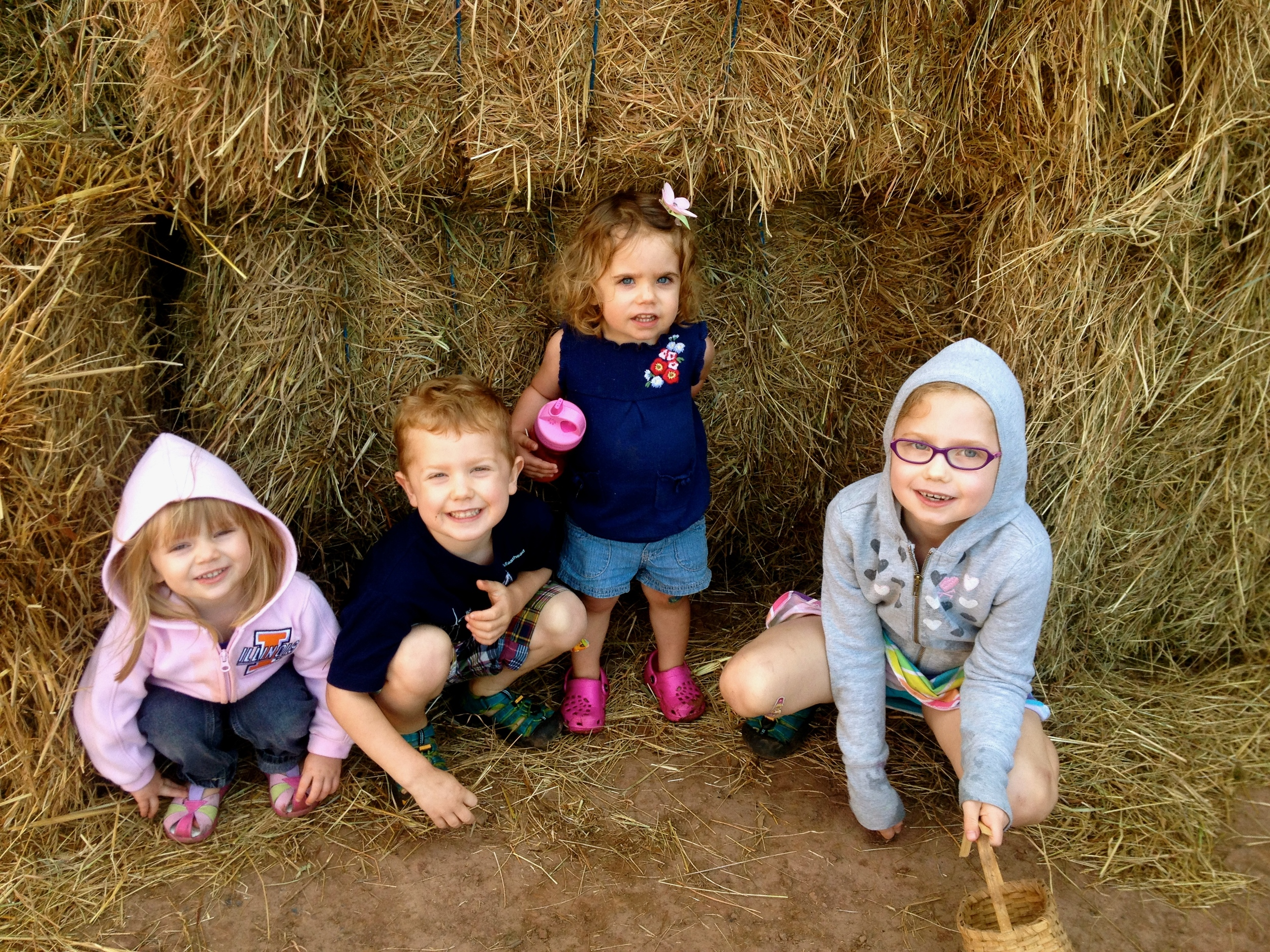 Photo in the hay.